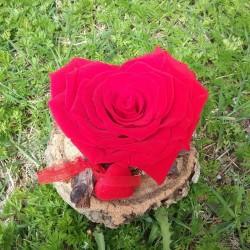 Madera con rosa preservada