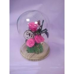 Cúpules amb roses eternes