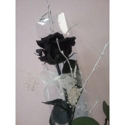 Roses liofilitzats