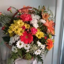 Cistella de flor variada