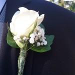 Prendidos o flor de solapa 11