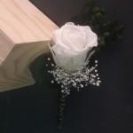 Prendidos o flor de solapa 20