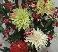Floristería en Terrassa especializada en montajes florales